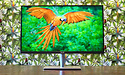 Asus ProArt PA32UC-K review: eerste 4K HDR-monitor met echte local dimming