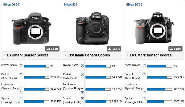 Nikon D800 vs D4 vs D700 DxOMark
