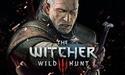 Nvidia geeft The Witcher 3 aan alle Titan X-bezitters