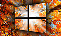 Microsoft stopt verspreiding Windows 10 October 2018 Update