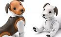 Gadget-huisdier van Sony nu ook als 'Chocolade Editie'
