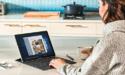 Problemen met Windows-update: Microsoft geeft toe dat nieuwste update computers laat vastlopen