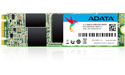 Adata SU800NS38 256GB