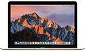 Apple MacBook 12 2017 (MNYL2FN/A)