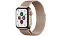 Apple Watch Series 5 4G 44mm Silver Sport Loop Gold