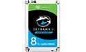 Seagate SkyHawk AI 8TB (ST8000VE000)