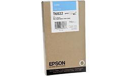 Epson T6022