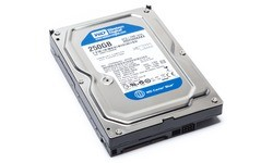 Western Digital Blue 250GB (16MB)