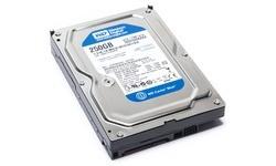Western Digital Blue 250GB (16MB)