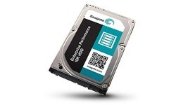 Seagate Enterprise Performance 10K HDD 600GB (SAS)