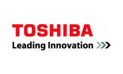 Toshiba MicroSDXC M203 R100 256GB