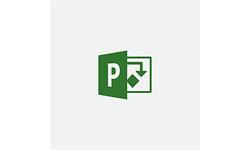 Microsoft Project Standard 2019 (EN)