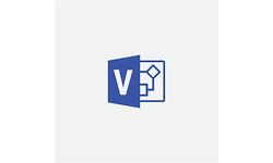 Microsoft Visio Professional 2019 1-user (EN)