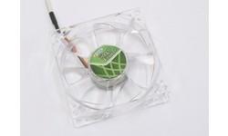 Titan Green Vision 80