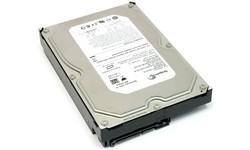 Seagate Barracuda 7200.10 400GB