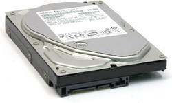 Hitachi Deskstar P7K500 320GB SATA2