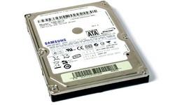 Samsung Spinpoint HM80 160GB SATA
