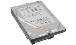 ExcelStor ESJ9250S 250GB SATA2