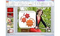 Microsoft Office Home & Business 2010 NL (PKC)