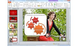 Microsoft Office Home & Business 2010 NL (Retail)