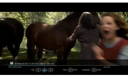 AC Ryan Playon!HD 2 500GB