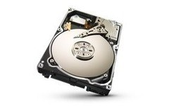 Seagate Constellation.2 250GB