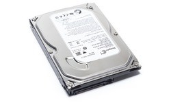 Seagate Barracuda 7200.14 250GB