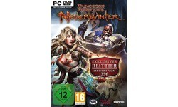 Dungeons & Dragons: Neverwinter (PC)
