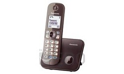 Panasonic KX-TG6811GA