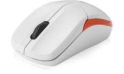 Rapoo 1190p White Full Size