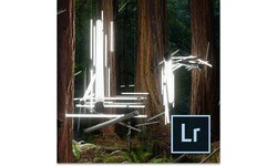 Adobe Photoshop Lightroom 6.0 MLP D