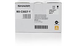 Sharp MX-C30GTY