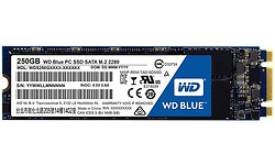Western Digital Blue SSD 250GB (M.2 2280)