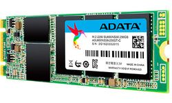 Adata SU800NS38 256GB