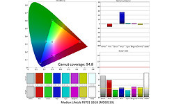 Medion Lifetab P9701 32GB (MD90239)