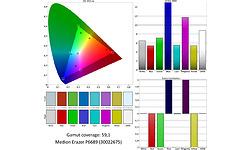 Medion Erazer P6689-i5-256 (30022675)
