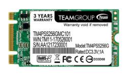 Team TM4PS5 256GB (M.2 2242)