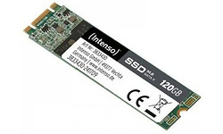 Intenso High Performance 120GB (M.2)