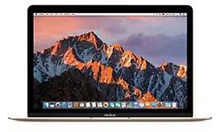 Apple MacBook 12 (MNYL2B/A)