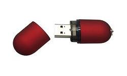 MicroMemory Satin USB2.0 2GB Red
