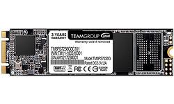 Team MS30 256GB (M.2 2280)