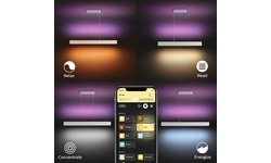 Philips Hue Ensis Hanglamp White & Colour White