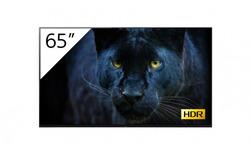 Sony FWD-65A8