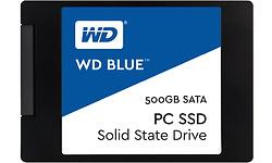 Western Digital Blue SSD 500GB (WDBNCE5000PNC-WRSN)