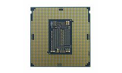 Intel Core i5 11400 Tray
