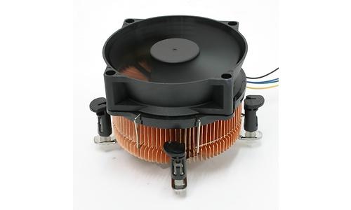 Nexus PHT-7750 SkiveTek Radial Intel