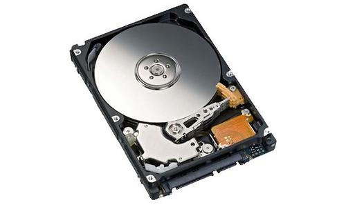 Fujitsu MHZ2500BT 500GB SATA2