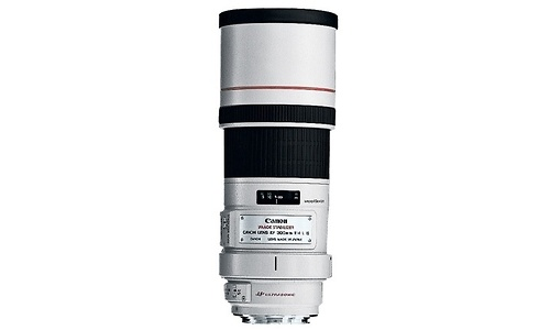 Canon EF 300mm f/4L IS USM + 1.4x Extender