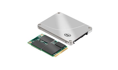 Intel 313 Series 24GB
