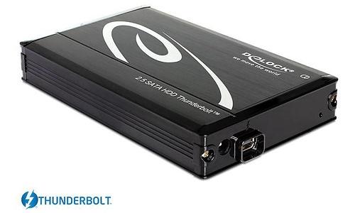 Delock Thunderbolt HDD Enclosure SATA
